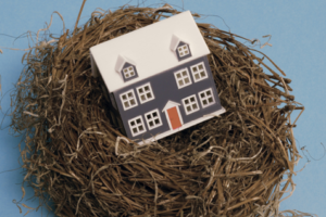 "The Psychological Experience of the ""Empty Nest"""